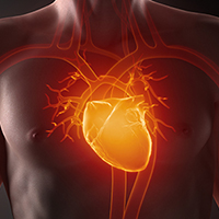 Cardiovascular Condition Case Studies